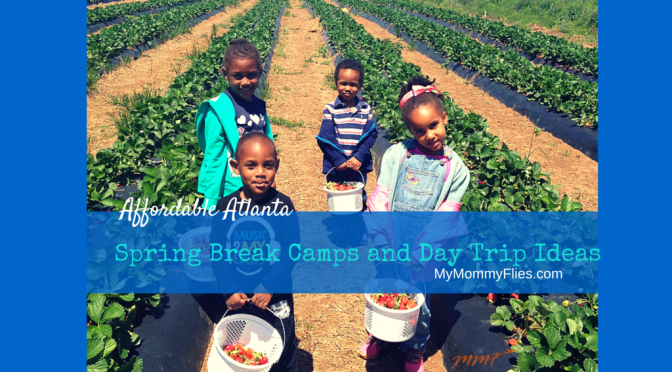 Affordable Atlanta Spring Break Camps and Day Trips