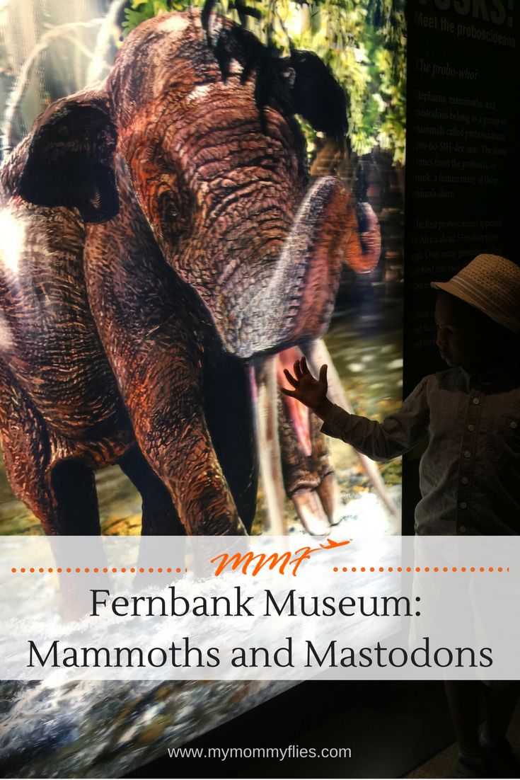 Fernbank_Museum_Mammoth_Mastodons